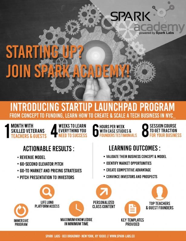 Executive Summary Spark Academy
