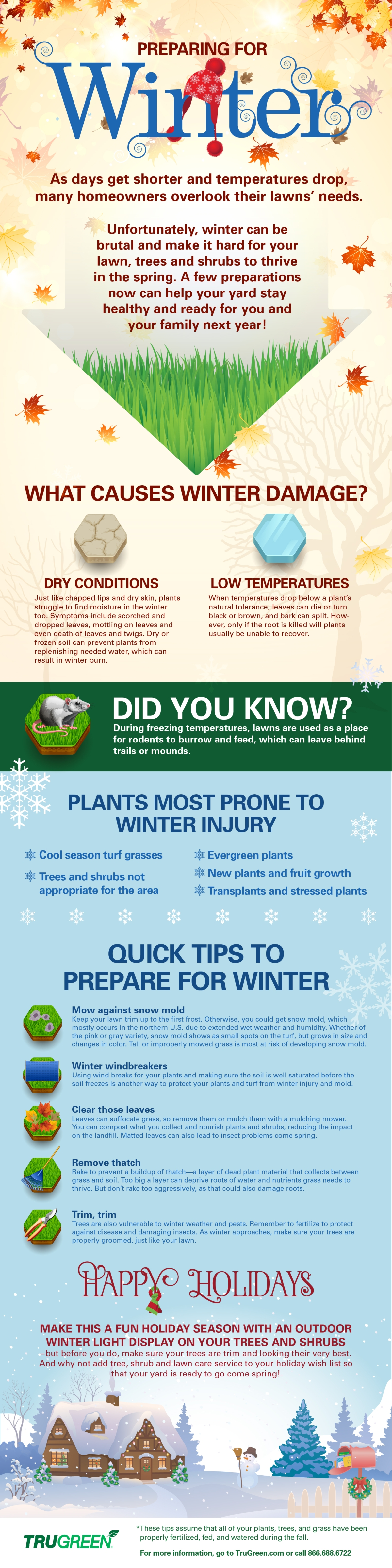 TruGreen Winter Lawn Care Tips